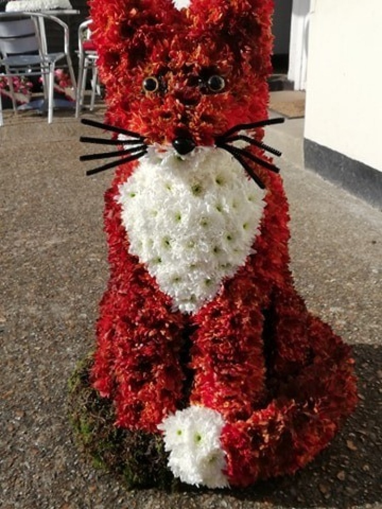 3D Mr Fox Floral Tribute