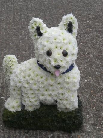 3D Westie Dog